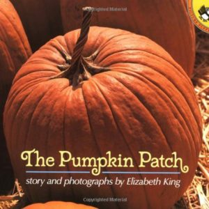 the-pumpkin-patch