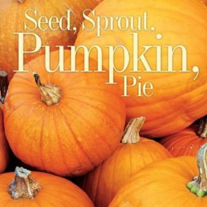 seed-sprout-pumpkin-pie